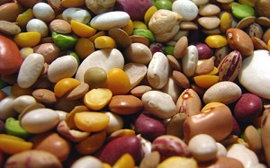 beans and lentils - soluble fibre foods