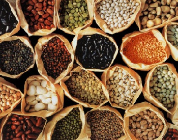 beans - insoluble fibre foods